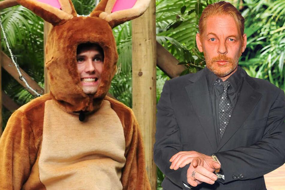 Ben Becker (52, re.) würde sich zum Dschungel-Hasen wie Honey machen? Er glaubt, dass er dschungelcampfähig ist, würde wohl aber  mehr durch Arroganz denn mit Teamfähigkeit glänzen.