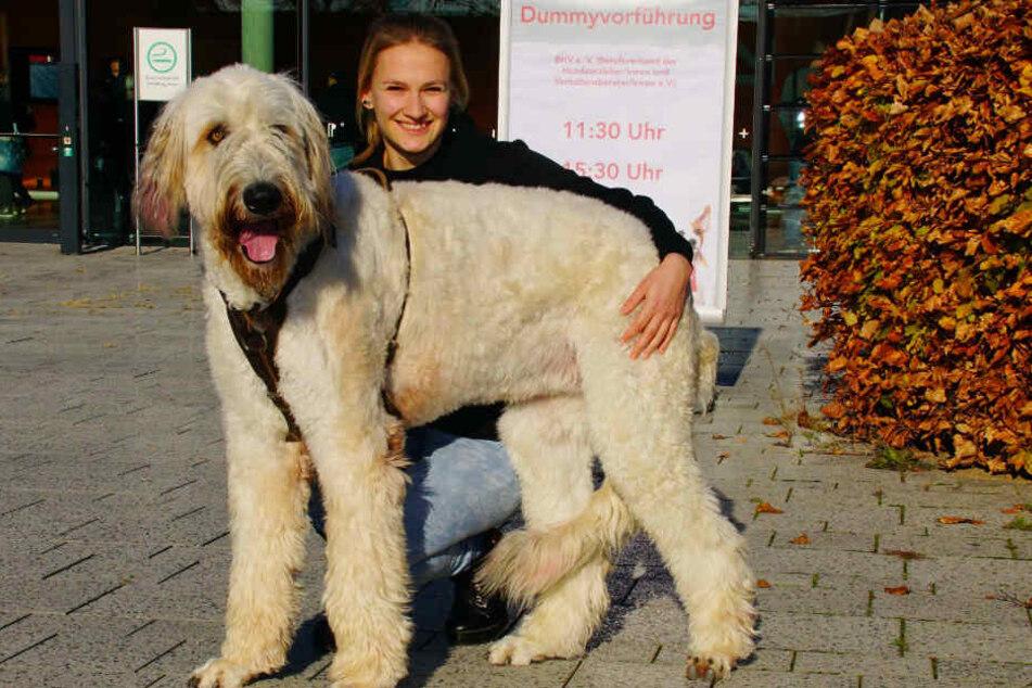 Irischer Wolfshund Menja und Hundehalterin Maike Stöcker: Menja ist fast einen Meter hoch.