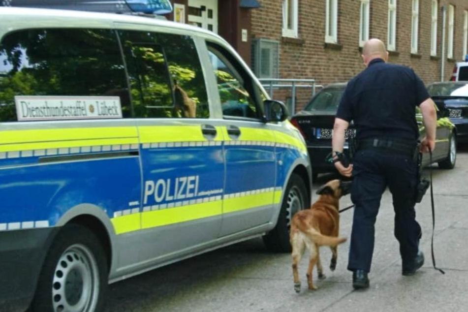 Auch die Diensthundestaffel Lübeck ist im Einsatz.