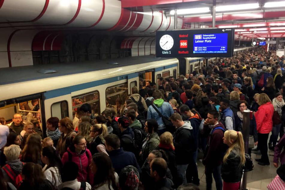 Experten kritisieren Tarifdschungel beim Nahverkehr in Bayern