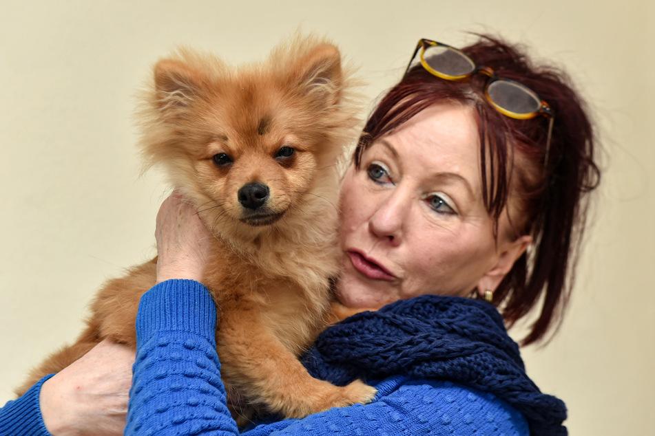 Regina Barthel-Marr (60) steht dem Tierschutzverein Freital vor, der eine Quarantänestation betreibt, wo Schmuggeltiere aufgepäppelt werden. Der Zwergspitz-Mix auf ihrem Arm hat die Quarantäne überstanden. Ob sein Besitzer ihn auslöst, ist unklar.