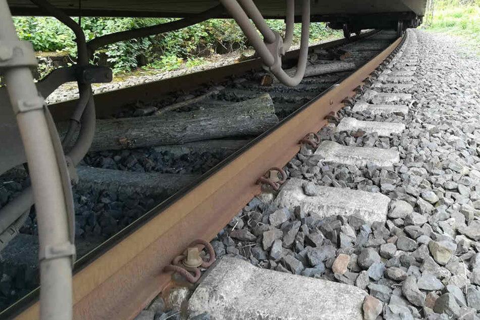 Die Regionalbahn hatte keine Chance mehr abzubremsen.