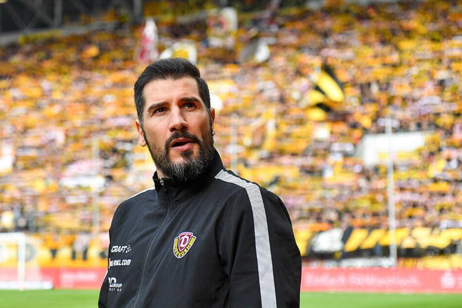 Muss auf sein erstes Auswärtsspiel als Dynamo-Trainer warten: Trainer Cristian Fiel.
