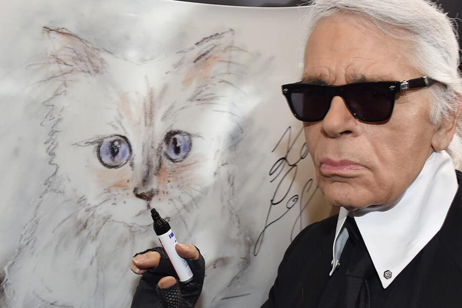 Nach dem Tod von Karl Lagerfeld: Das passiert mit seiner geliebten Katze Choupette
