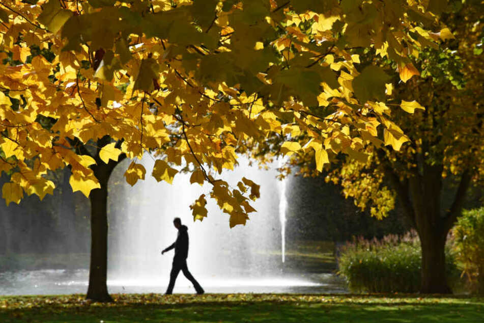 Hessen kam nicht wirklich in den Genuss eines goldenen Oktobers. (Symbolbild)