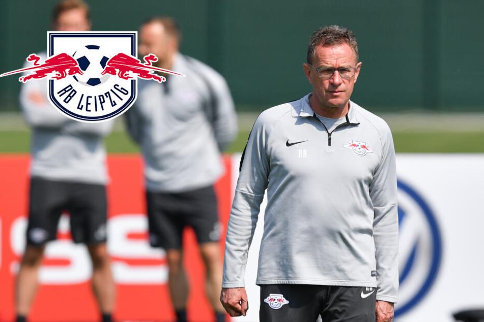 Friseur-Affäre bei RB Leipzig: Jetzt mischt sich auch noch Rangnick ein