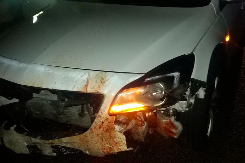Opel crasht auf Autobahn in Wildschwein-Rotte