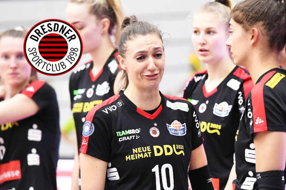 Krimi in Schwerin! Dresdner SC verliert 2:3 nach 2:0-Führung