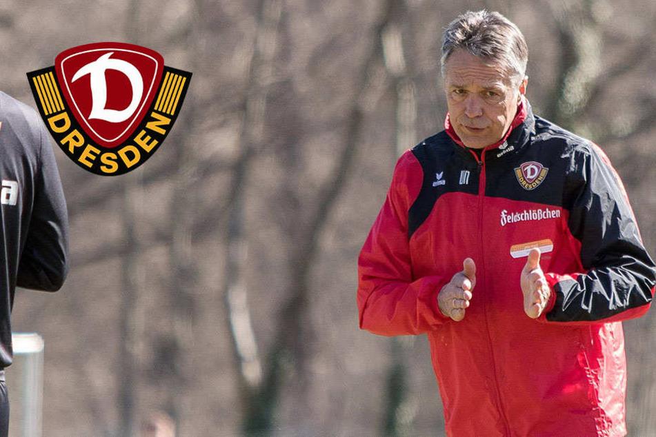 Dynamo will in Braunschweig die Auswärtsbilanz aufpolieren