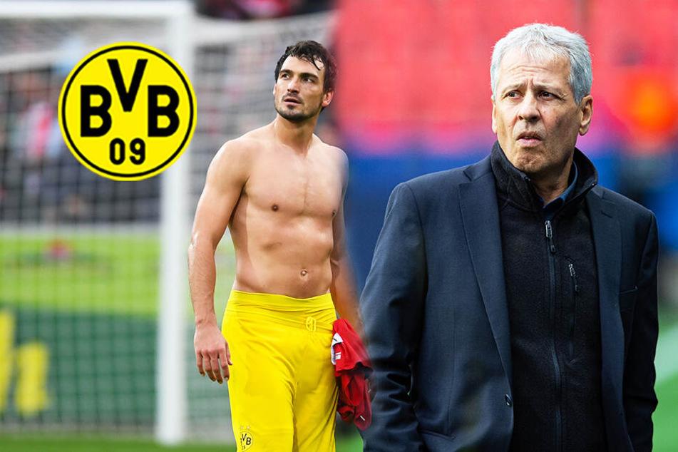 BVB kommt nicht in die Erfolgsspur! Für Fans ist Trainer Favre schuld