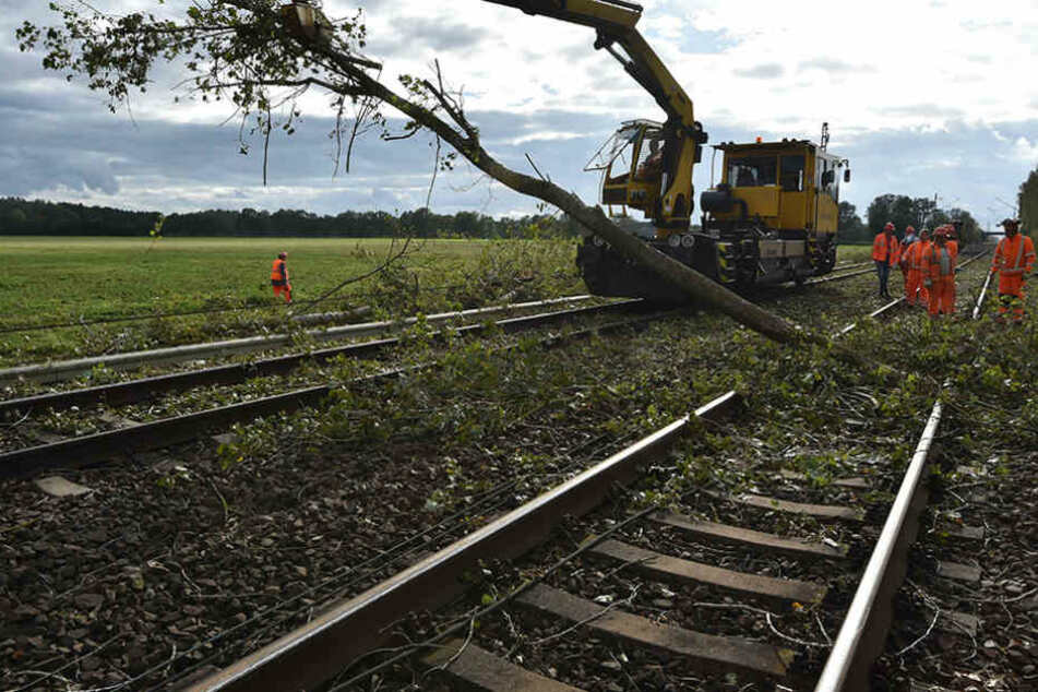 Am Montag räumten die Bahnmitarbeiter weiterhin umgestürzte Bäume von den Gleisen.
