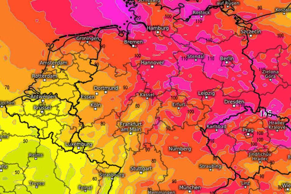 Nach einer aktuellen Prognose muss am Wochenende mit einem heftigen Herbststurm gerechnet werden.