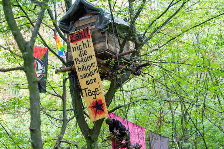 Behörden wollen Baumhäuser im Hambacher Forst kurzfristig räumen