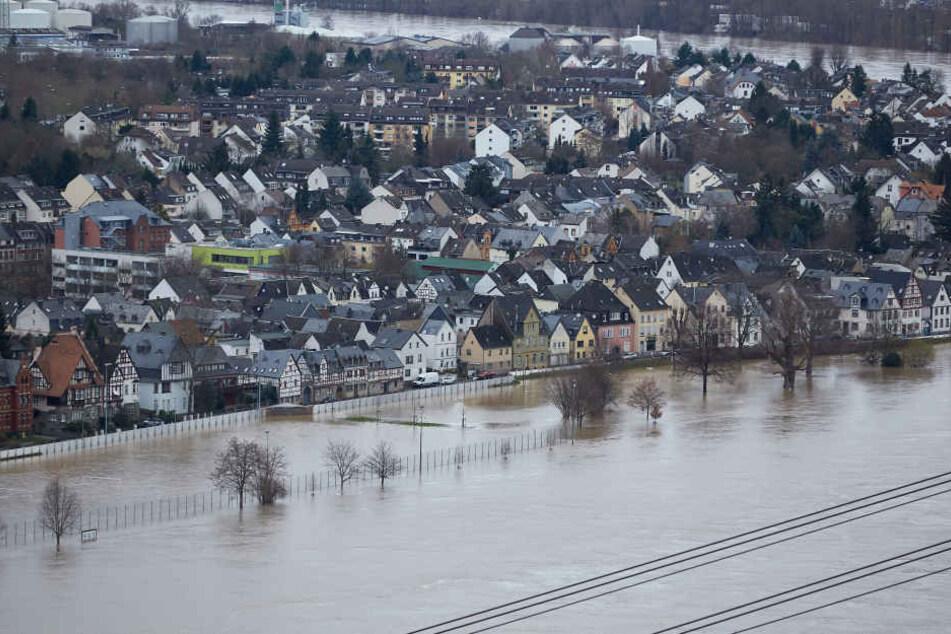 Die Hochwasserschutzmauer in Koblenz-Neuendorf ist erstmals im Einsatz.
