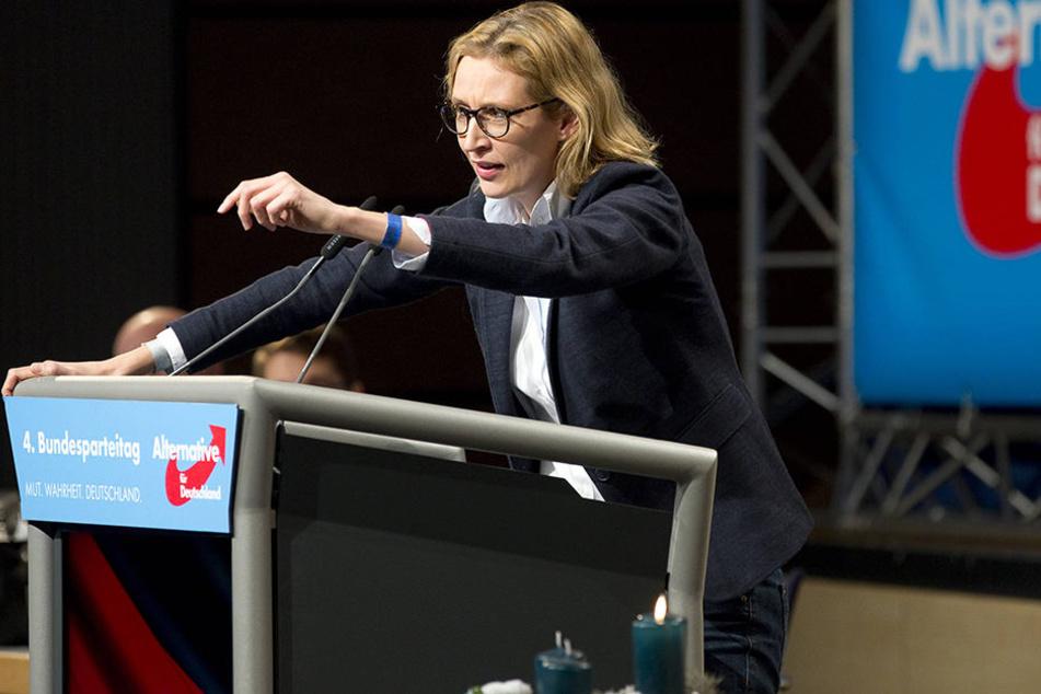 """AfD-Bundesvorstandsmitglied Alice Weidel will's """"sozial-elektrisch""""."""