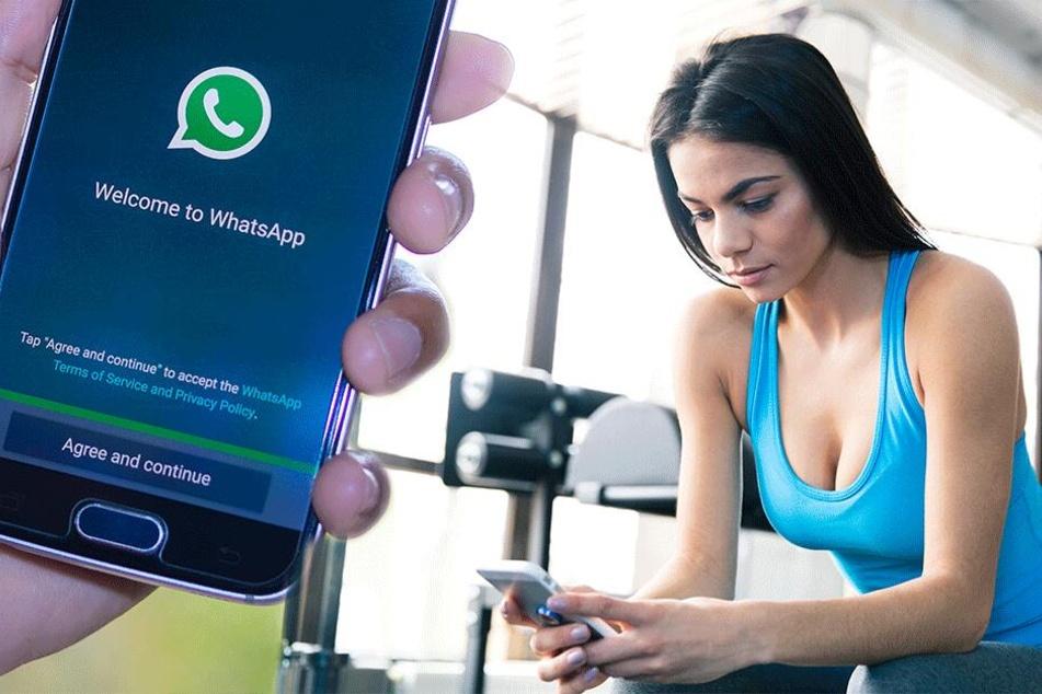 Endlich! WhatsApp testet neue Funktion, auf die viele User schon lange hoffen