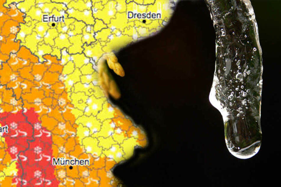 In Sachsen war es im Januar so warm wie selten. Die Monatsmitteltemperatur lag bei 2,9 Grad Celsius.