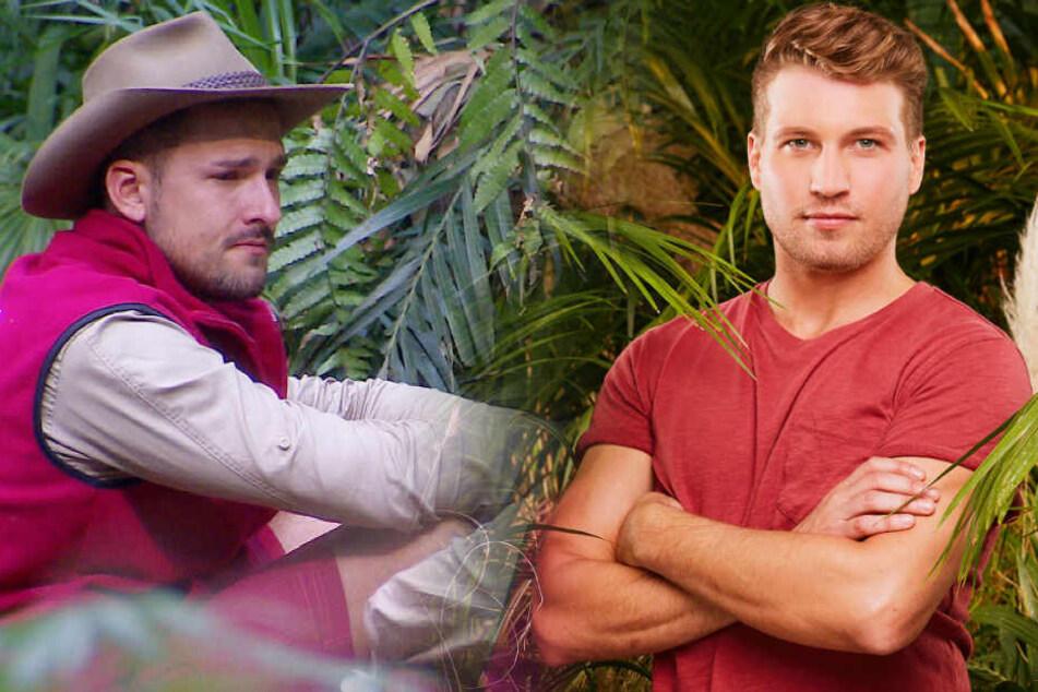 Dschungelcamp: Dschungelcamp-Favorit Raul Richter? So lustig reagiert das Netz