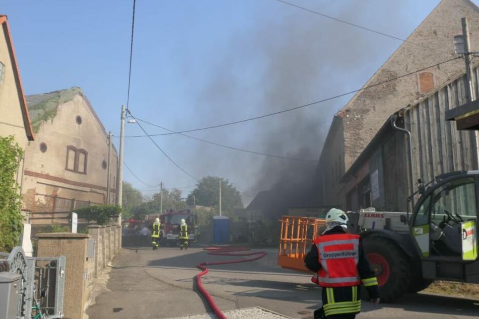 Zwei Personen versuchten zunächst vergeblich, die Flammen zu löschen.