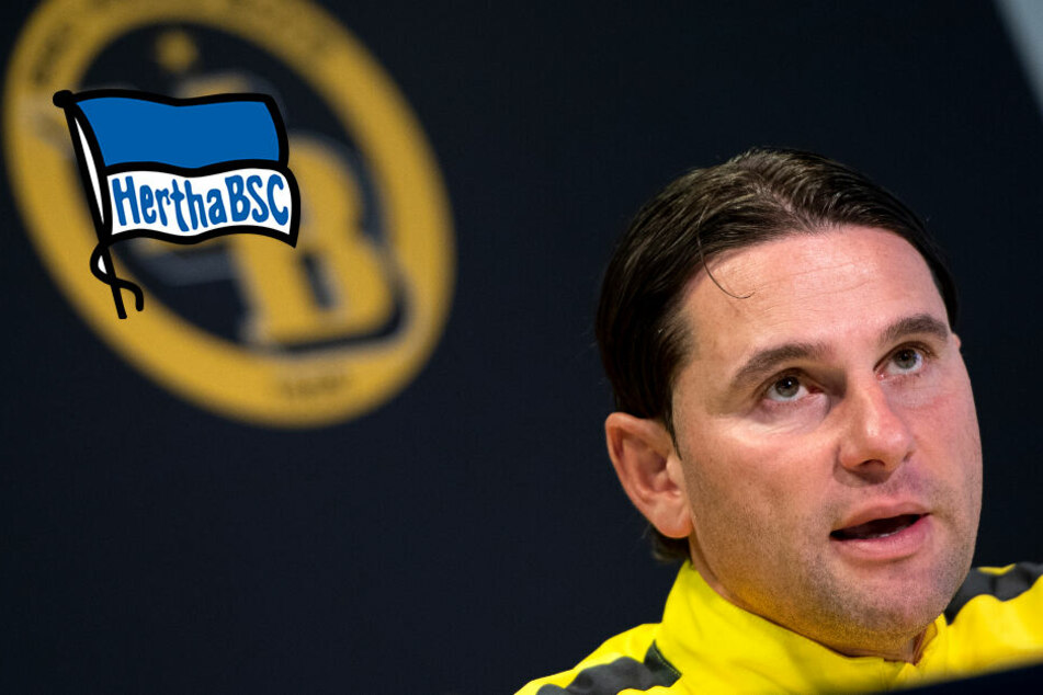 Hertha Neuer Trainer