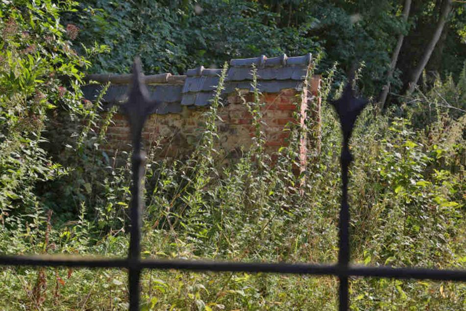 Auf dem Hof der ehemaligen Obermühle ging es blutig zu. Von dem Haus des Ehepaars Fischer stehen nur noch die Grundmauern.