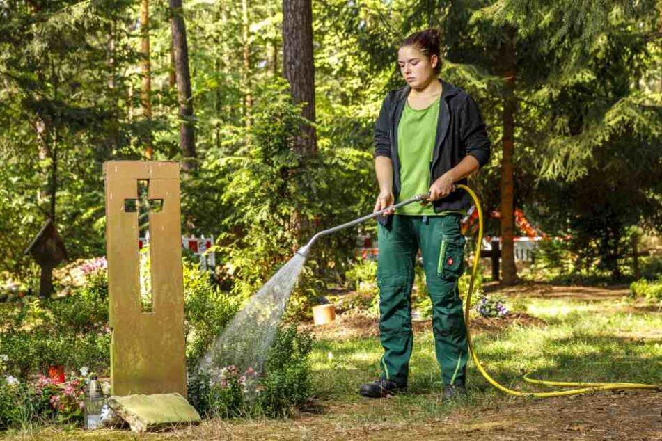 Linda Grafe (18), Auszubildende im Garten- und Landschaftsbau, gießt Anpflanzungen auf Gemeinschaftsgräbern.