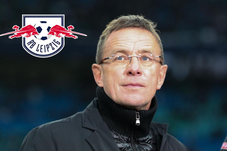RB Leipzig beendet Rotation: Rangnick ruft den Konkurrenzkampf aus