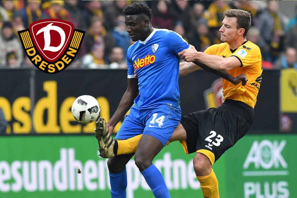 Last-Minute-Neuzugang: Peniel Mlapa stürmt zu Dynamo