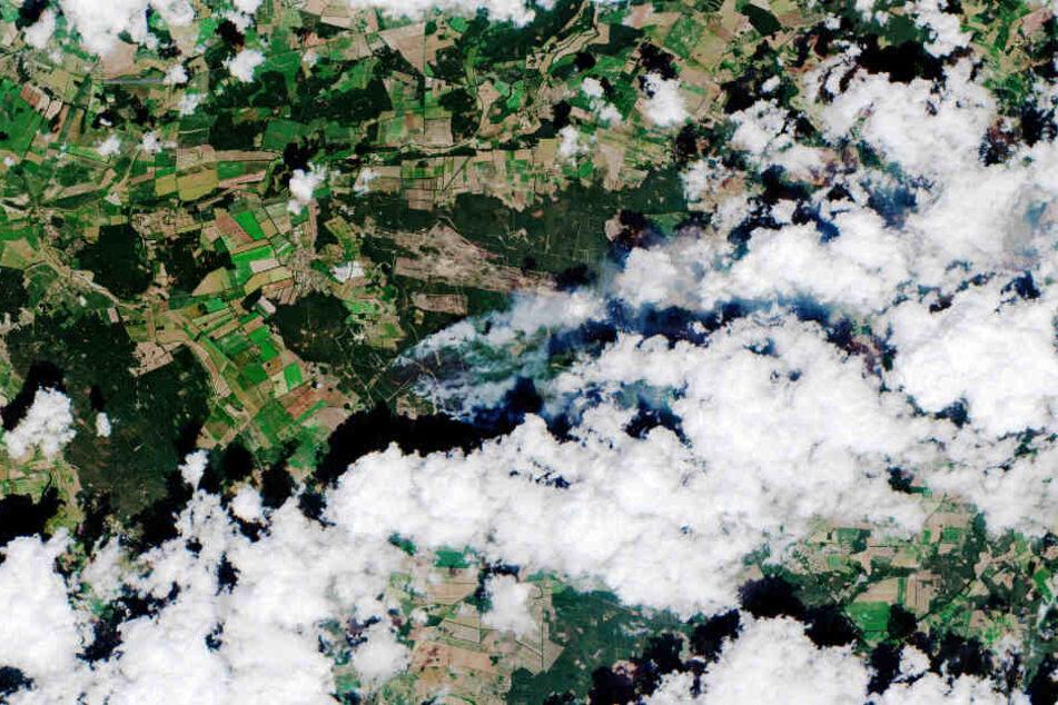 Ein Satellitenbild zeigt das ganze Ausmaß des Waldbrandes bei Lübtheen.