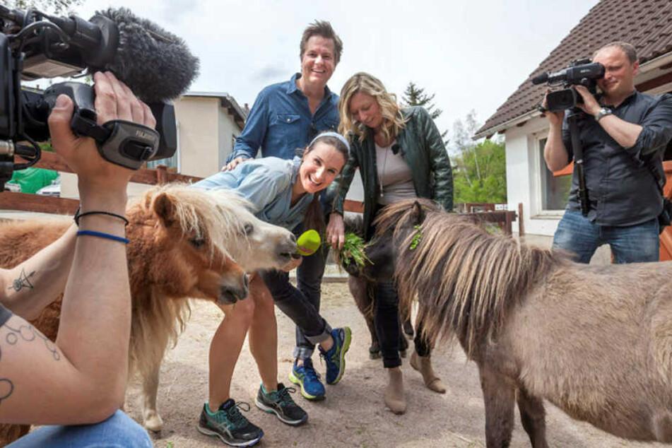 Die Radiomoderatoren Sarah von Neuburg (34) und Lars-Christian Karde (42) ließen sich von Zoo-Chefin Bärbel Schroller (50) den Tierpark zeigen.
