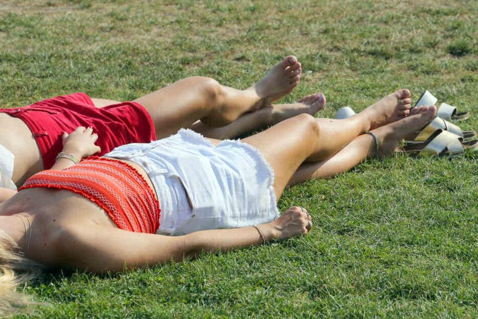 Viele Menschen freuen sich jetzt über das warme Wetter, doch für den Sommer kann das weitreichende Folgen haben.