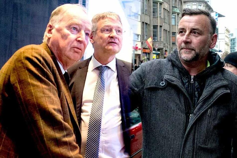 Bachmann muss weg! AfD stellt Bedingungen für Zusammenarbeit mit PEGIDA klar