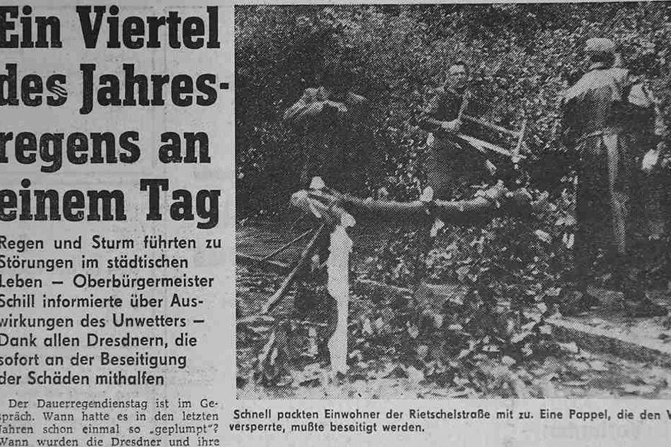 Auch Einwohner packten - wie hier an der Rietschelstraße - sofort mit an, nachdem Bäume im Unwetter gekippt waren.