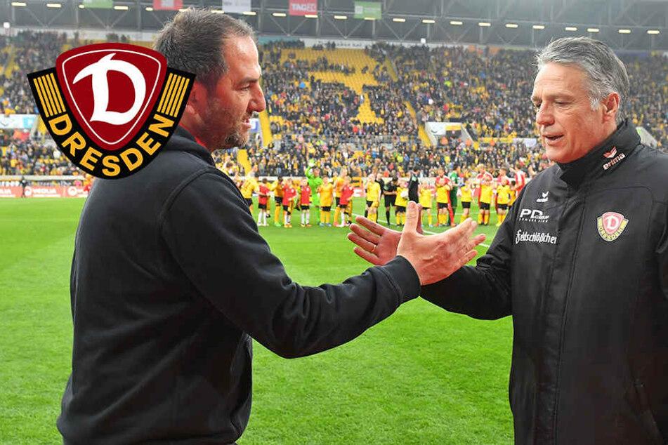 Nach zwei Jahren 2. Liga: Dynamo-Coach Neuhaus auf Rang zwei!
