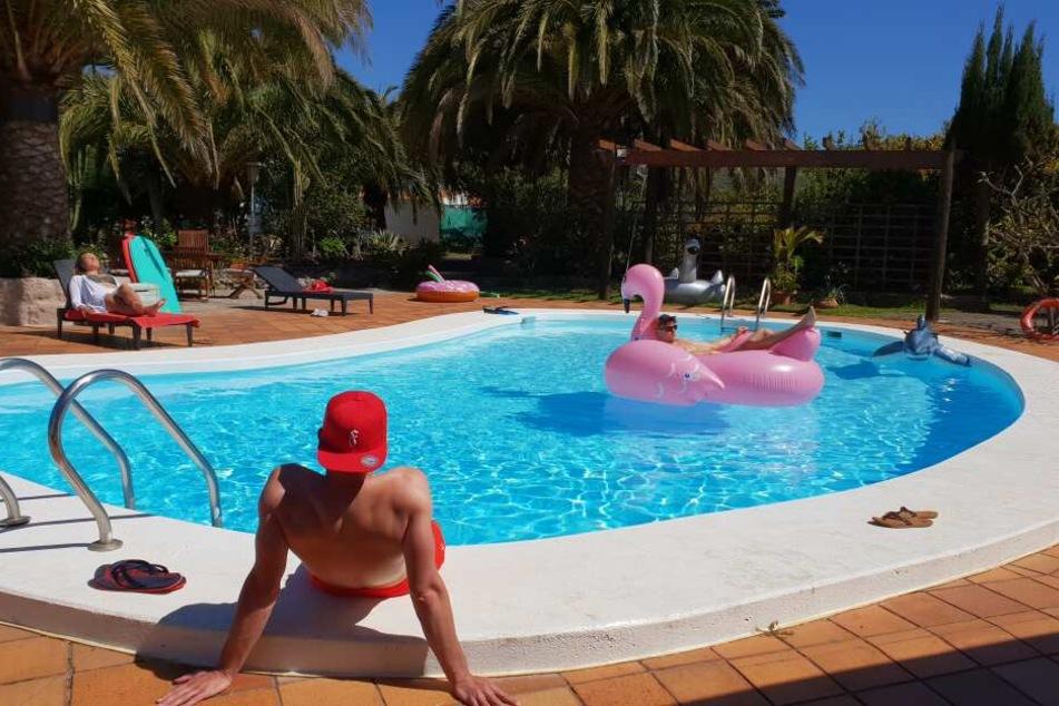 So könnte Eure Unterkunft aussehen: Ferienwohnung mit Pool.