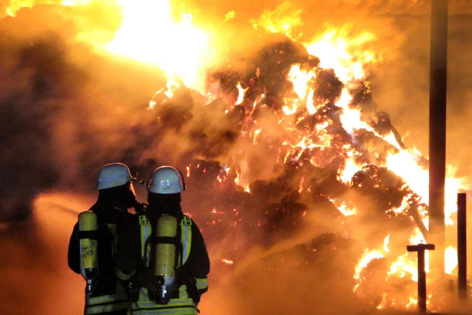 Im Vogtland sind rund 250 Strohballen in Flammen aufgegangen. (Symbolbild)