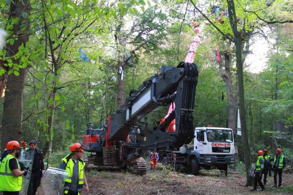 Bei der Räumung der Baumhäuser kommt schweres Gerät zum Einsatz.