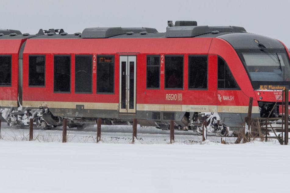 Baum kracht unter Schneelast auf Gleise: Reisende sitzen stundenlang in Zug fest