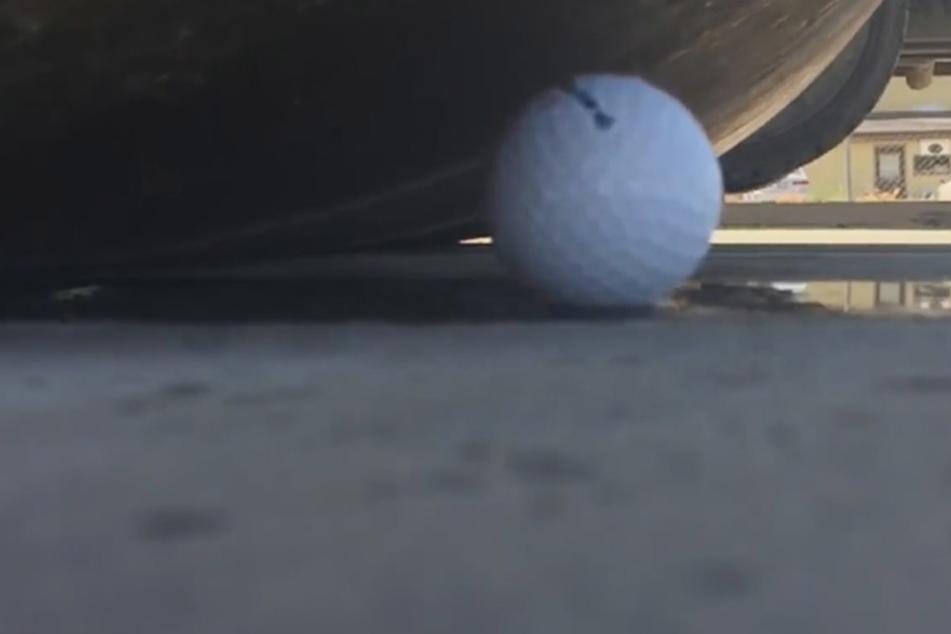 Golfball vs. Dampfwalze - wie geht dieses Duell wohl aus?