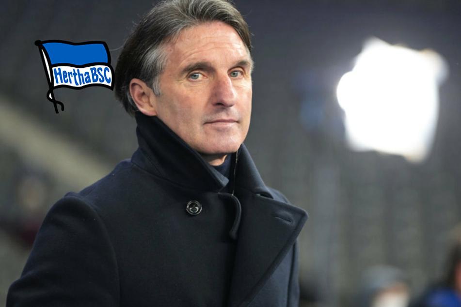 Hertha BSC stellt auch Bruno Labbadias Co-Trainer frei