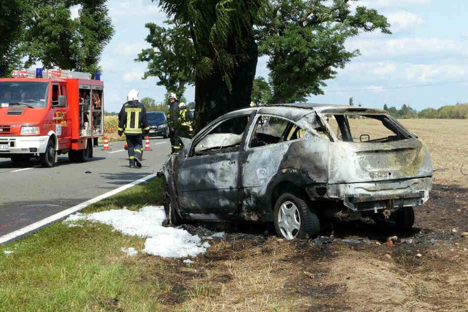 Ausgebrannt steht der Ford vor dem Straßenbaum. Hinterm Steuer verbrannte ein 27-Jähriger aus Nordsachsen.