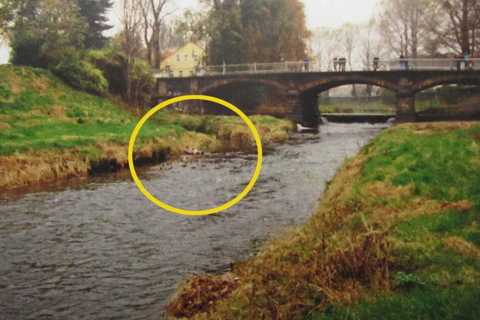 Hier wurde im Oktober 1996 die Leiche des getöteten Trinkers Hans-Georg B. an der Mandau gefunden.