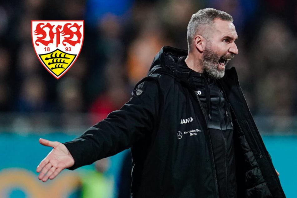 Entfacht beim VfB nach heikler Walter-Aussage wieder die Trainerdiskussion?