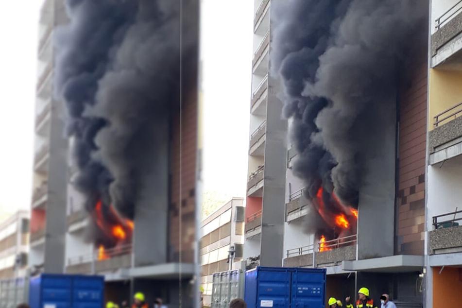 Riesige Rauchsäule in Frankfurt! Was ist hier passiert?