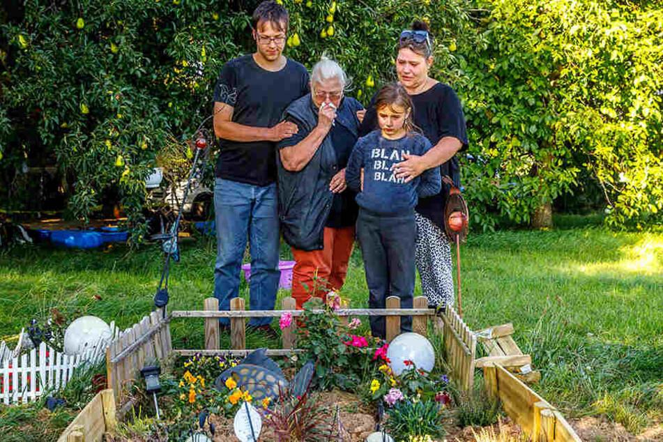 Florian (21, v.l.), Gisela (78), Chiara (8) und Odette Spranger (48) trauern  am Grab ihrer Hunde.