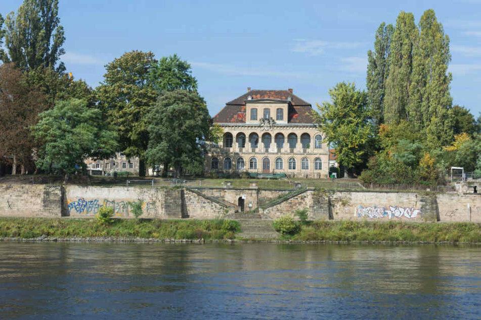 Schloss Übigau soll eine der Anlegestellen für die Wasserbusse sein.