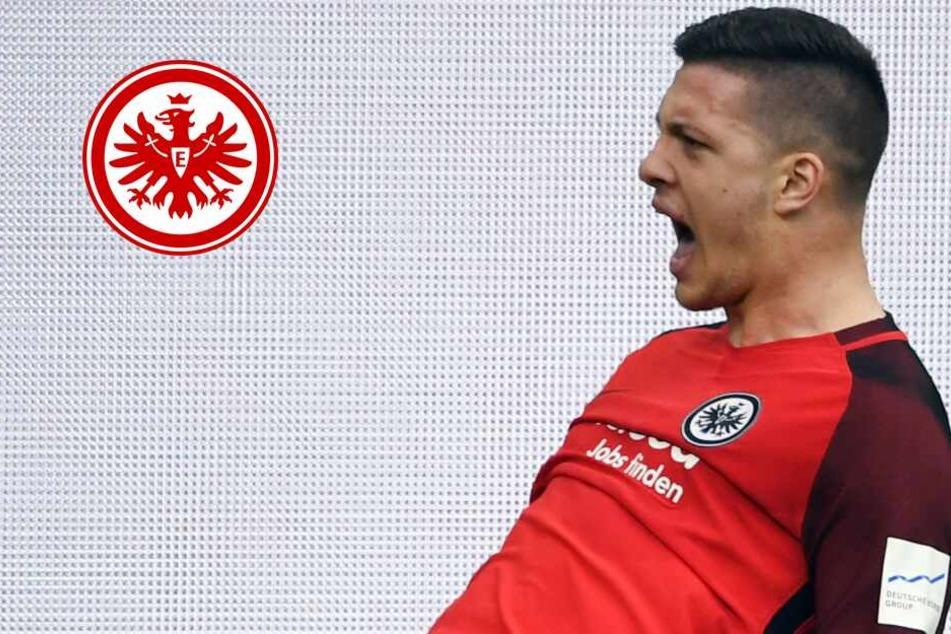 Vor Europa-League-Duell mit Benfica: Eintracht macht wichtigen Fortschritt bei Jovic