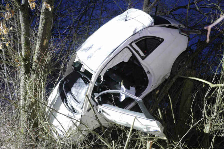 Das Auto landete in Bäumen, nachdem es von der Straße abgekommen war.