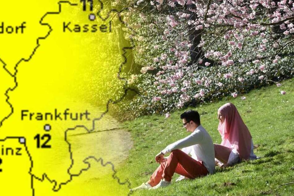 "Danke, ""Hannelore""! Hoch bringt den Frühling nach Hessen"