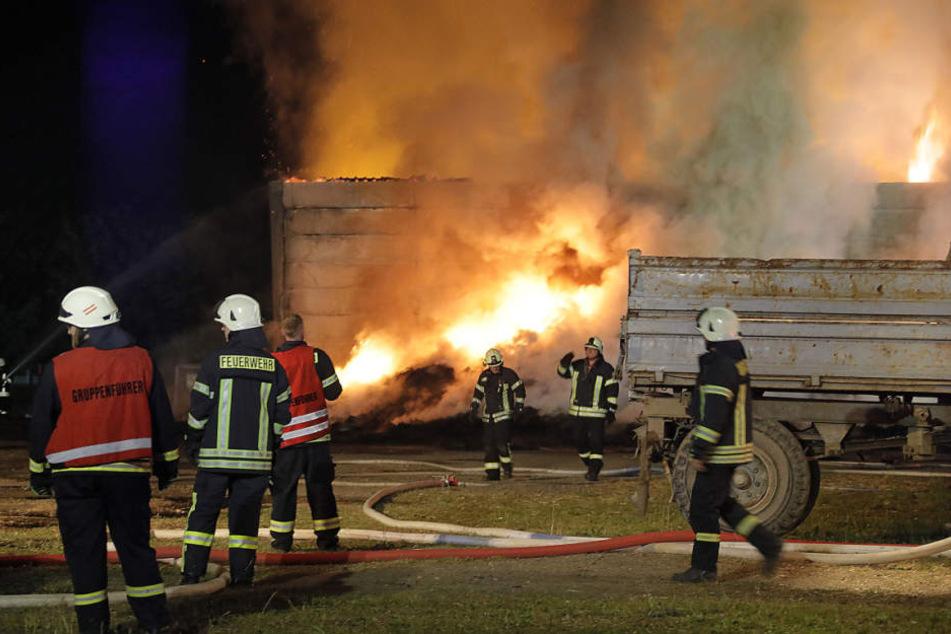 Ein Lager mit Futter brannte in voller Ausdehnung.